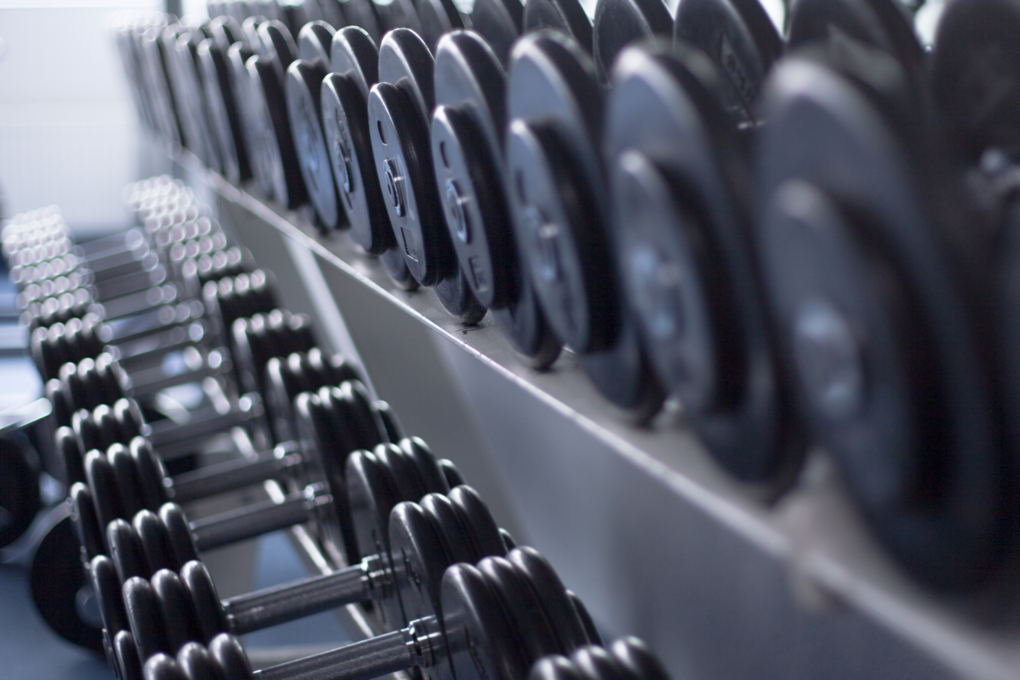 Don T Waste Your Cash Used Dumbbells For Sale In 2018