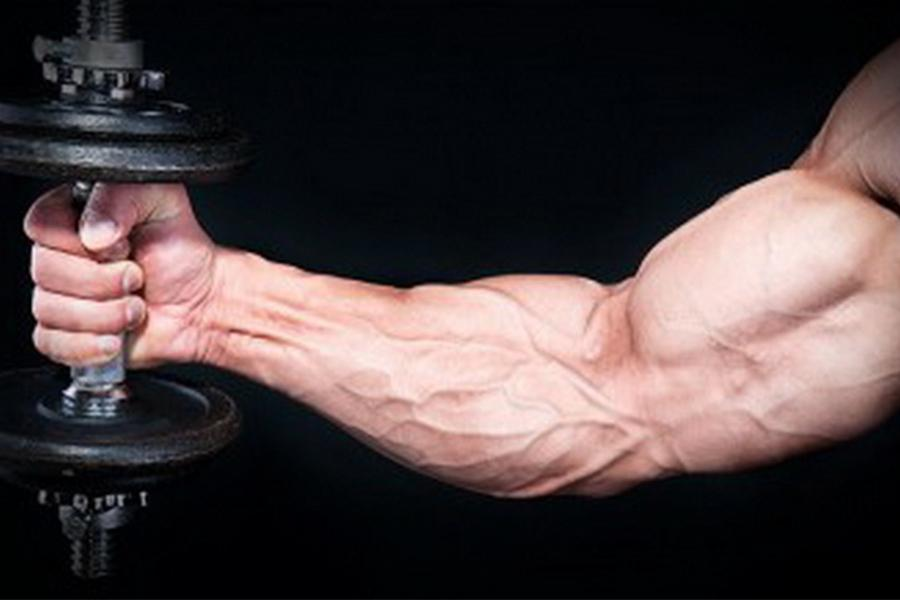 a person holding a dumbbell