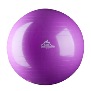 Best Stability/Exercise Ball Reviews 2017