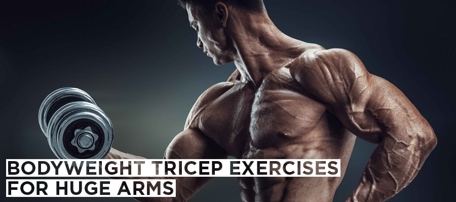 Bodyweight Tricep Exercises For Huge Arms