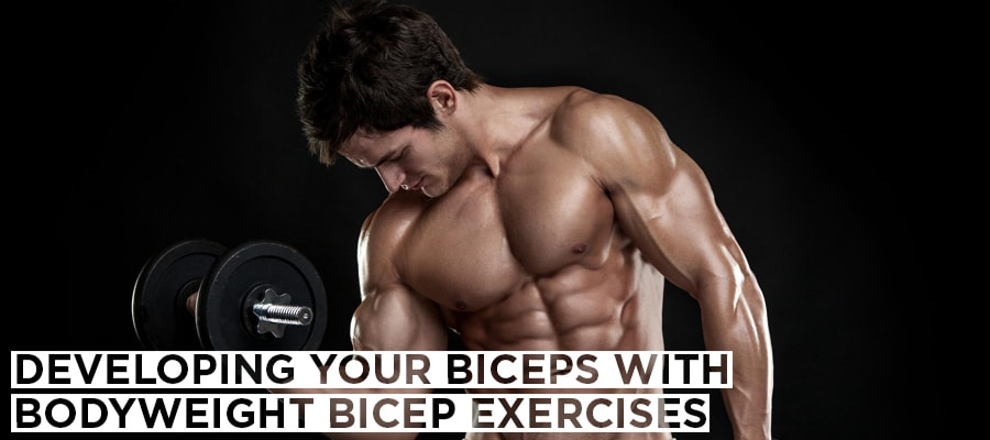 Developing Your Biceps With Bodyweight Bicep Exercises